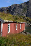 Red Norwegian fishing hut. Closeup of red Norwegian fishing hut in Lofoten islands with mountains in background royalty free stock image