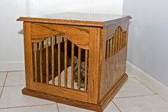 Red Oak Made Dog Kennel for Small Dogs Royalty Free Stock Photos