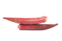 Red okra Royalty Free Stock Photography
