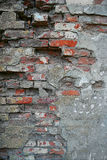 Red old worn brick wall background. Vintage color stock images