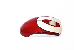 Red omputer mouse isolated on the white background Stock Image