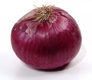 Red Onion. Photo of large Red Onion stock photography