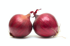 Red onion. Isolated on white background Royalty Free Stock Photos