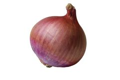 Red onion. Isolated on white background Royalty Free Stock Image