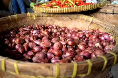 Red onion. Small red onions in wicker basket Stock Images