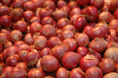Red Onion. In the street market stock image