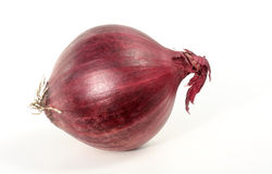 Red onion. Single red onion on white background Stock Photography