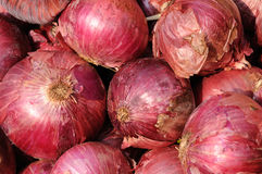Red onion background Stock Images