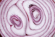 Red Onion Background Stock Photos