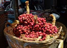 Red onion in basket Royalty Free Stock Image