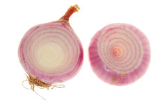 Red Onion Bulb Royalty Free Stock Photography