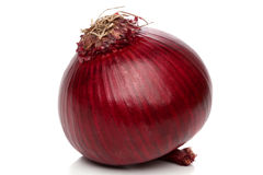 Red onion bulb isolated Royalty Free Stock Photos