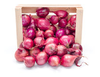 Red onion bulbs in wooden crate Royalty Free Stock Images
