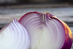 Red Onion Close up Royalty Free Stock Photo