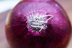 Red onion and a colorful background - marco close up Stock Photos