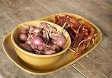 Red onion and dried chilli Stock Photography