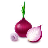 Red onion with flower on white background Stock Photo