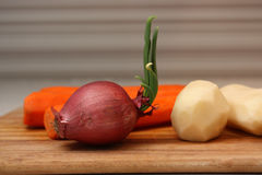 Red onion on the foreground and peeled potatoes and carrots on the background. Royalty Free Stock Images