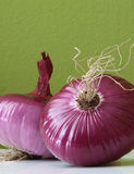 Red onion fruit Royalty Free Stock Images