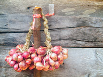 Red Onion. Red Onion hanging on the wall of the house Stock Photo
