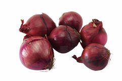Red onion isolated on white Stock Image