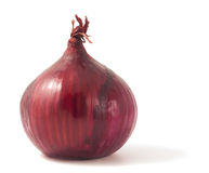 Red onion isolated on white background. Royalty Free Stock Photo