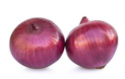 Red onion isolated on white background.  royalty free stock photography