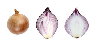 Red onion isolated on white background Royalty Free Stock Photography