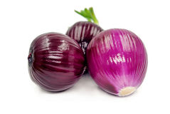 Red onion isolated on white background. 。 Stock Photography