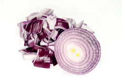 Red onion isolated on white background. 。 Stock Image