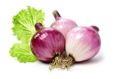 Red onion. Isolated on white background stock image
