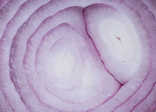 Red Onion Layers Close Up Stock Images