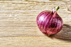 Red onion lying on a table Stock Image