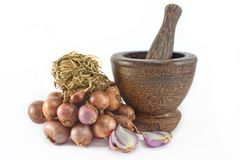 Red  onion and mortar Royalty Free Stock Images