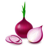 Red Onion On White Background Stock Photos