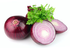 Red  onion and  parsley Stock Images