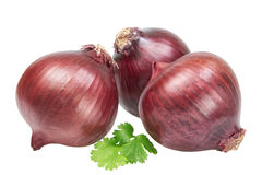 Red onion and parsley. Royalty Free Stock Photos