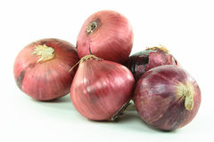 Red onion pile. Stock Image