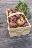 Red Onion on Rectangular Basket Royalty Free Stock Image