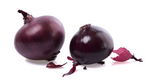 Red onion with shell. Scattered red onion peel away royalty free stock photo