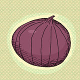 Red Onion Stock Photography