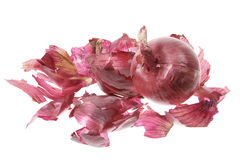 Red Onion and Skin Stock Image