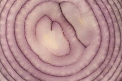Red onion slice Royalty Free Stock Photo
