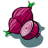 Red Onion and Slice Royalty Free Stock Image