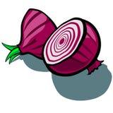 Red Onion Slice Stock Photo