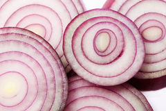 Red onion slices Royalty Free Stock Image