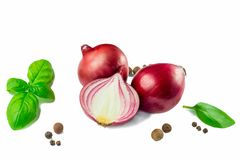 Red onion and spices isolated on white background. Top view Royalty Free Stock Photos