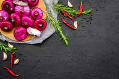 Red onion among spices rosemary, garlic, chili peper on black background top view space for text. Red onion among spices rosemary, garlic, chili peper on black Stock Photography