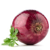 Red onion tuber and fresh parsley Royalty Free Stock Photos