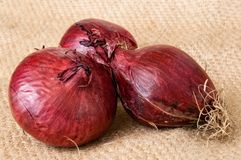 Red onion vegetable Royalty Free Stock Images
